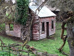 Abandoned  Timber Cottage Napier Taihape Gentle Annie Road New Zealand (eriagn) Tags: moawhango iphone paddock chimney ivy timber historical history farming photography ngairehart eriagn gentleannieroad napier taihpe dwelling abandoned derelict cottage newzealand