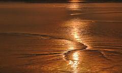 Before High Tide (cotswoldman) Tags: riversevern river severnvale severn water mud mudflats tide hightide lowtide tidalrange gloucestercameraclub gloucestershire sunset sun severnbore colour landscape