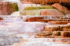 Ledges (Brian Truono Photography) Tags: mammothhotsprings nps nationalpark nationalparkservice wyoming yellowstone abstract calcification calciumcarbonate caldera detail extract geology geothermal landscape natural nature rock terraces water yellowstonenationalpark unitedstates us