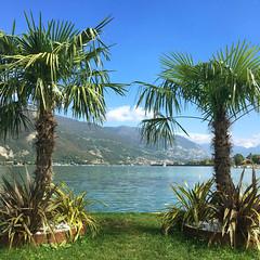 (Paolo Cozzarizza) Tags: italia lombardia brescia paratico acqua lago lungolago panorama prato alberi