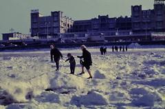 dutch winter (49) (bertknot) Tags: winter scheveningen denhaag dutchwinter dewinter winterinholland scheveningendenhaag winterinthenetherlands hollandsewinter winterinnederlanddutchwinter