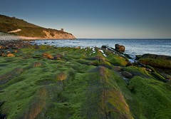 Guadalmesí verde. Explore. 189. (Francisco J. Pérez.) Tags: naturaleza nature spain paisaje panoramica tarifa sigma1020mm campodegibraltar pentaxk5 ´franciscojpérez