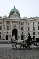 Hofburg (cn174) Tags: vienna horse austria sterreich pferd wein hofburg hasburg hofburgpalace