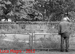 villa comunale (Luca Magni) Tags: thoughtful elderly fontana pensieri abruzzo 18105 anziano lanciano municipalgardens nikon18105 nikond7000