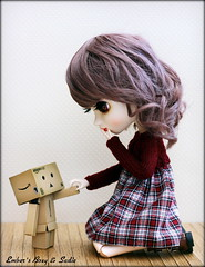 When Boxy met Sadie (pure_embers) Tags: new uk red brown colour cute girl eyes kiss doll dolls dress sweet stock adorable sadie mini romance lips planning wig modified pullip luts pure meet gentleman jun embers boxy rosy danbo boxboy obitsu rosybrown stica cangaway pureembers