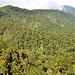 Cordillera de Talamanca (2)