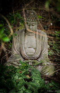 From http://www.flickr.com/photos/10780216@N07/8599038060/: Buddah by Zeroy
