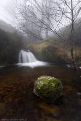 Una piedra con musgo (Peru Serra) Tags: rio rbol montaa niebla rocas polarizador sigma1020 pentaxk5