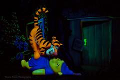 Winnie the Pooh (Kevin-Davis-Photography) Tags: world dark ride magic kingdom disney pooh tigger winnie walt