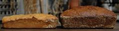banana breads (postbear) Tags: food brown cakes kitchen cake bread baking error banana bananas vegetarian mistake soda loaf edible bake breads bananabread loaves baked fuckup bakingsoda leavening leaven robfordasshole destroycraigslist robfordisanasshole robfordandstephenharperaredisgustingbigots robfordisalyingsackofshit allconservativesarefilth likeallbulliesrobfordisachickenshitcoward robfordisafraidofeverything robfordisastupidbitch marywalshformayororprimeminister thenewmapfunctionisterrible robfordhasneonazisforfriends foundoutreadingisdifficult robfordisadisgustingfuckingthief thenewuploaderisalsoterrible helpourformermayorisastupidclown formermayorrobfordlikescottaging call911theformermayorsbeatinghiswifeagain richwhiteconservativesbuyjusticeyetagain leaveningagent robfordsexuallyassaultswomen