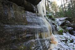 Chemin glissant (Qusoygascoun) Tags: france tourism nature montagne promenade neige paysage arbre icicles sentier fort stalactites vosges insolite verdure glace tourisme mousse randonne caverne sousbois spectaculaire cleurie