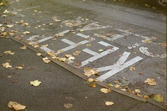 Keep Clear (dichohecho) Tags: autumn winter film leaves analog analogue pentaxmesuper fujisuperia400 roll59 dichohecho