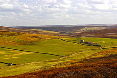The North Yorkshire Moors Explore #20 (/Becca/) Tags: landscape countryside yorkshire moors northyorkmoors northyorkshire moorland northyorkshiremoors sleddale northyorkshiremoorsnationalpark gisboroughmoor percycrossrigg