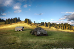 Carpathian mountain sunny hills (nickolay_khoroshkov) Tags: wood travel summer sunlight mountain tree green nature field grass sunshine rural forest sunrise woodland landscape countryside scenery village hill scenic meadow sunny ukraine highland valley mountainside carpathian