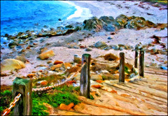 back at the beach (Sunnyvaledave) Tags: beach asilomar
