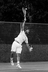 20160716_Benton_Westmorland_Park_Lawn_Tennis_Club_Open_Day_1197.jpg (Philip.Benton) Tags: tennis event tenniscourt tennisplayer tennisnet racquetsports tenniscoach