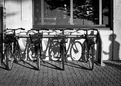 Of Wheels & Shadows (michellerobinson.photography) Tags: canonphotography 5dmkii michellerobinson michmutters blackandwhitephotography blackwhite monochrome streetphotography shadows stilllife bicycles reflection observational glenelg southaustralia australia