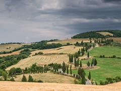 Harvest at Monticchiello (Di_Chap) Tags: valdorcia italie italy monticchiello
