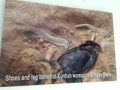 #kurdish#kurd#kurdistan#shahid#anfal# (shiraq795) Tags: kurdish kurd kurdistan shahid anfal