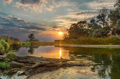 River of change (piotrekfil) Tags: landscape nature water waterscape river riverside trees sky clouds sunset sun pentax poland piotrfil