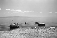 Solitude (bhop) Tags: salton sea california indio desert saltonsea bw monochrome black white kodak trix 400tx film nikon f4 f4s filmcamera analog 2850mm ais water lake rocks
