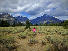 What a road trip! #engaged #rockymountains #yellowstone #grandtetons #bryce #zion #grandcanyon #arches #roadtrip (snapflogen) Tags: yellowstone bryce roadtrip grandcanyon grandtetons zion arches rockymountains engaged