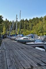 Bootsteg (Gernot Arnberger) Tags: steg boot schiff stausee see ottenstein mitterreith segeln segel hafen waldviertel sport natur