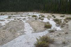 DSC_6230 (AmitShah) Tags: banff canada nationalpark