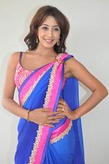 South Actress SANJJANAA PHOTOS SET-1 (49)