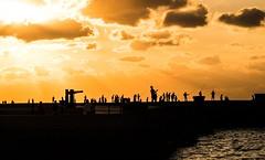 (ross_123) Tags: fuji xt10 cuba cubans night evening sunset water sea fishing shadow havana la habana travel photography xt