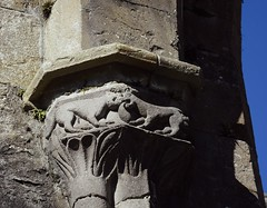 Beasties (HoosierSands) Tags: boyle coroscommon abbey ruins cistercian ireland ire