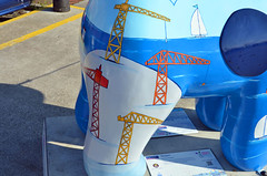 Skipper-H-17-September-2016 (Steve Ellwood Whitley Bay) Tags: greatnorthsnowdogs guidedog mikeclay northshields cliffordsfort ellwood steveellwood skipper joannewishart dfds westernquay fishquay