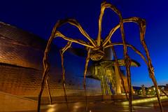 Guggenheim at night. (wexfenne24) Tags: spain outdoor bilbao guggenheim gallery