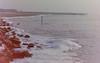dutch winter (18) (bertknot) Tags: winter dutchwinter dewinter winterinholland winterinthenetherlands hollandsewinter winterinnederlanddutchwinter