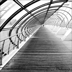 Infinity Bridge. (Photoroca) Tags: wood city bridge espaa metal architecture puente spain arquitectura madera iron infinity horizon ciudad zaragoza tunel infinito circulo horizonte colum barandilla columnas hondo arquitecto profundidad