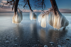 Tree of icE (timcorbin) Tags: longexposure winter ontario ice sunrise canon whitby leefilters