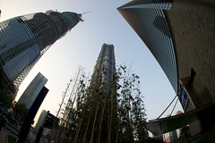 Shanghai World Financial Center Tower