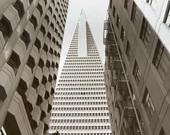 transamerica pyramid (fffreds) Tags: sanfrancisco california street blackandwhite buildings san francisco minolta minoltax700 transamerica merchant transamericapyramid merchantstreet