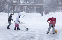 Four Shovelers (Lisa-S) Tags: winter portrait snow ontario canada michael lisas megan snowing brampton shoveling alun accepted 2582 gettyimagescanada copyright2013lisastokes winterstormnemo