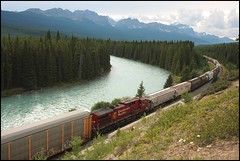 Westbound with the Bow River (greenthumb_38) Tags: railroad canada reunion train rockies canadian alberta locomotive canadianpacific cp bowriver 2012 canadianrockies jeffreybass august2012 moseankoreunion