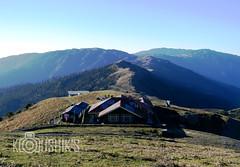 Trekkers hut, Phalut.. (Koushik's Vision) Tags: nepal forest trekking trek landscape trekkers adventure hut himalaya darjeeling highaltitude westbengal sandakphu sleepingbuddha koushik phalut tumling trekershut moderatetrekking koushiksvision singalilanationalforest kanchanjungapeak
