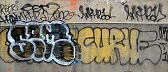 Graffiti In Lower Manhattan. Curve. Sem. Inkhead (Allan Ludwig) Tags: graffiti sem curve inkhead graffitiinlowermanhattan