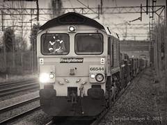 Freightliner 66544 (barpilot) Tags: train nikon cheshire crewe locomotive freight barpilot 66544