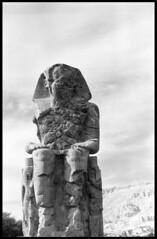 Koloss von Memnon in Luxor / Ägypten (hen.ry) Tags: 6x6 rolleiflex mediumformat blackwhite kodak tmax egypt d76 sw luxor ägypten tempel tmax100 planar memnon mittelformat rolleiflex35e koloss