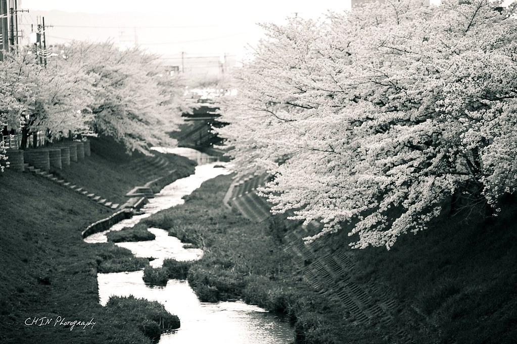 kyoto-46