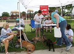 06 (GALT Greyhounds) Tags: june events 2007 greyhounds galt dogdayafternoon