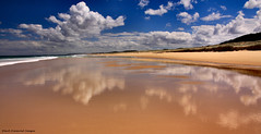Cloud Reflections - Submarine Beach, Yagon, Myall Lakes National Park, Seal Rocks, Great Lakes, NSW (Black Diamond Images) Tags: 9thmarch2013 beach beaches myalllakesnationalpark reflection reflections sealrocks submarinebeach yagon australianbeach australianbeaches nsw australia greatlakes greatlakestourism cloud clouds cloudreflection k9 k1x greatlakesnsw nswtourism bdi shipwreck captcurphy captaincurphy abrahamcrijnssen submarine submarinewreck dutchnavy fionabeach blackdiamondimagescollection nswnationalparks k1xsubmarine kixsubmarine shipwreckedsubmarine