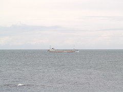 Ben Maye (divnic) Tags: uk sea boats boat ship ships vessel northernireland ni northchannel countydown irishsea cargoship groomsport belfastlough northdown ardspeninsula generalcargoship benmaye imo7726861 northdownborough mvbenmaye 7726861 ramseysteamship bidefordshipyard