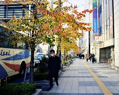 Autumn (JanneM) Tags: street autumn red man tree 120 film yellow japan tokyo fuji jan  mf  100 platser janne ektar objekt moren mnniskor gf670