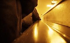 Goldig ... 81/365 (Skley) Tags: street photo foto fotografie creative picture commons menschen cc bild rolltreppe kreativ gelnder 81365 strasenfotografie skley